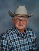 Wayne Owens